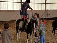 Stage Equitation Comines 5/6 ans et 7/8 ans 01 et 02/08/2017