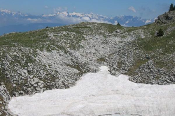 Neve dans le Vercors..