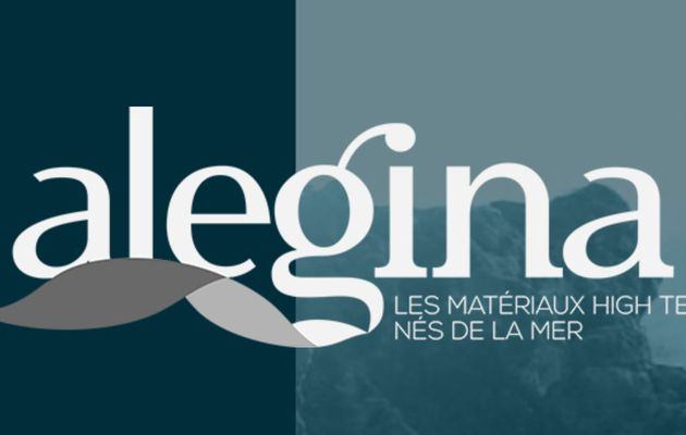 In Vendée, Alegina transforms oyster shells into raw materials
