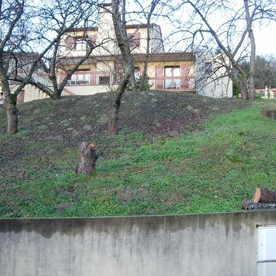Aménagement d'un ancien verger en jardin d'agrément.