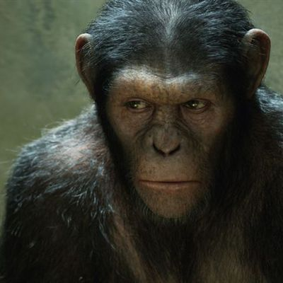 La planète des singes : les origines, de Rupert Wyatt (USA, 2011)