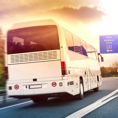 Die Fernbuslinien in Deutschland im Vergleich