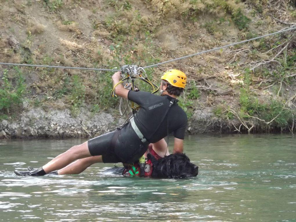 """Nous avons passé l'après-midi au Parc Aventure de Vidauban . Une tyrolienne a été installée spécialement pour nos terre-neuve qui arrivaient dans la rivière """" L'ARGENS """""""