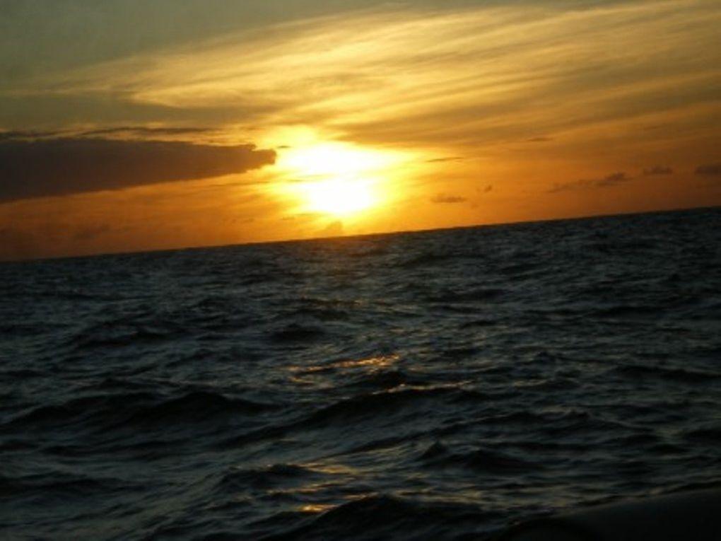 Album - Les-couches-de-soleil-de-CIGALE