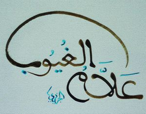 L'islam n'est pas la propriété ni l'apanage des barbus et des voilées.