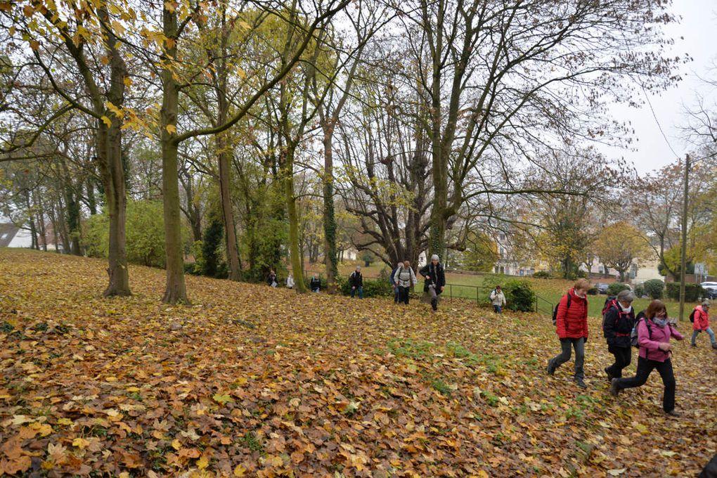Sortie petite journée du vendredi 16 novembre 2018 Parcs et jardins le long de l'Yerres