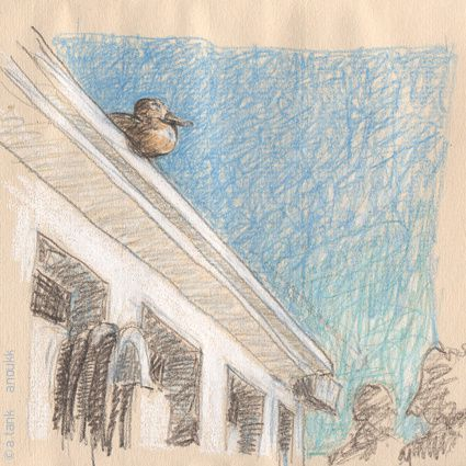 une partie des dessins et illustrations parues sur ce blog.  ... tous droits réservés, bien sûr... bonne visite!