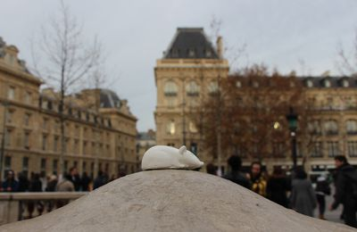 #Paristesouris Place de la République