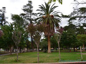 Cafayate, Argentine en camping-car