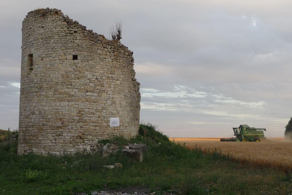 Album - 2010.-La-moisson-au-moulin-de-Roucy
