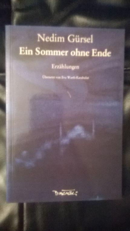 """Même si : """"Certains sentiments ne s'expriment bien que dans la langue qui vous a bercé""""... Les 6 livres traduits en Allemagne. Pour les autres c'est ici aussi :"""