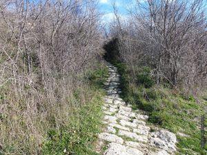 L'accès aux ruines