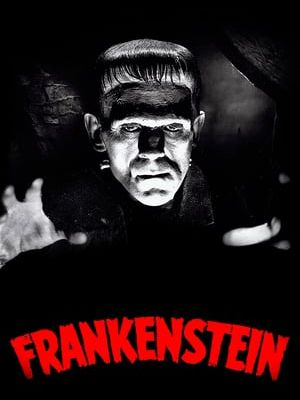 『MOVIEZ123▲ WATCH!! Frankenstein (1931) FULL MOVIE- 1080P ON BOXOFFICE卍