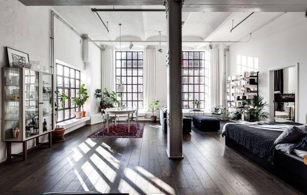 Un loft parfait pour les plantes vertes