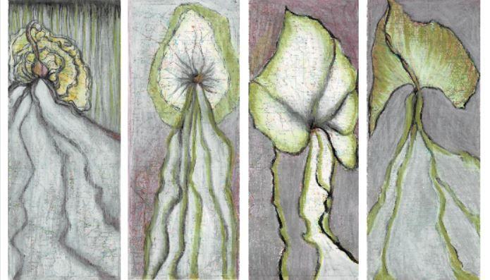 flore en gris