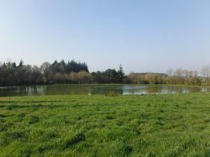 Le château ; le parc et l'étang.