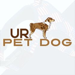 UR Pet Dog