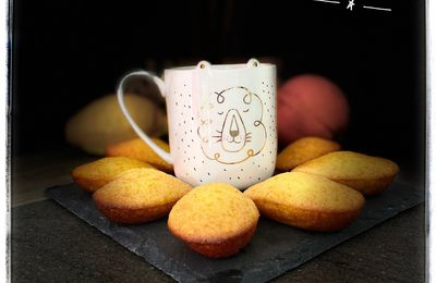 Madeleines citron-orange-miel