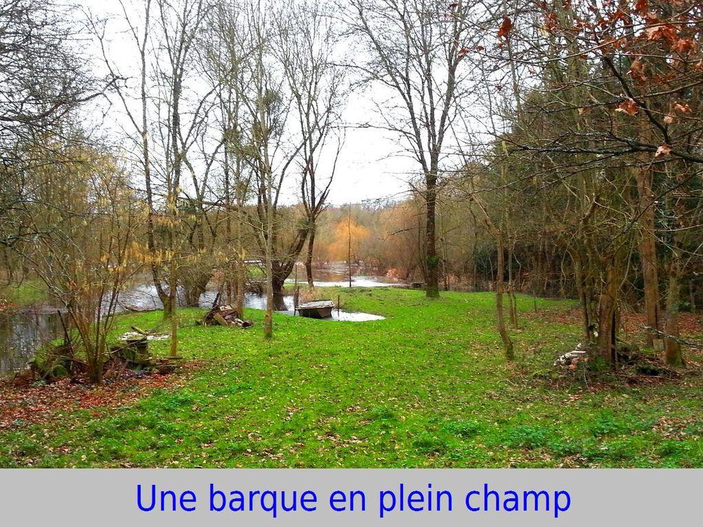 """Les """"8 Km"""" au Lac de Grandlieu"""