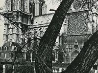 Gravure de la façade Ouest endommagée de la cathédrale suite aux déprédations subits pendant la Révolution - Chantier de restauration au XIXe siècle. - Photo  période contemporaine de la partie Sud de Notre Dame avant l'incendi du 15 avril 2019.