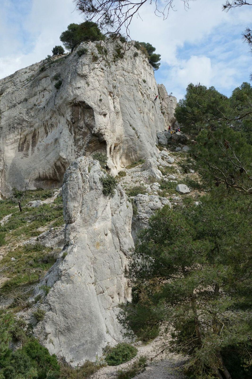 le vallon du Saut, ses chèvres du Rove semi-sauvages et ses aiguilles de calcaire éparpillées dans la pinède