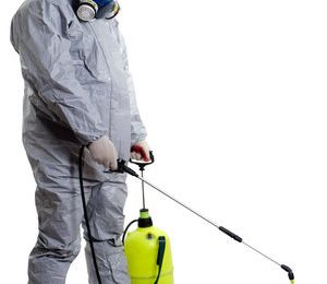 3 Crucial Methods to Choose Your Exterminator