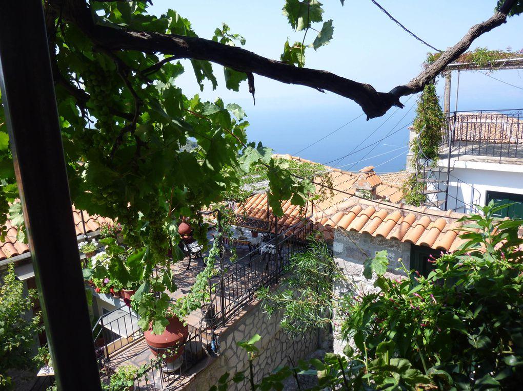 Retour à Molivos et son beau kastro byzantin. Départ de Michèle pour Athènes. On ne se lasse pas de Molivos, au tourisme discret, ses plages au bas de la ville, le port presque vide, les tavernas autour du port de pêche.