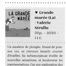 COUP DE COEUR POUR LA GRANDE MAREE EN BELGIQUE DANS LA REVUE LIBBYLIT !!