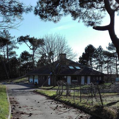 Le camping de la Pinède : L'exagération