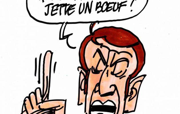 Jet d'œuf contre Macron.....