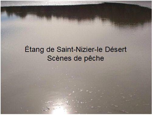 Album - Dombes, terre de culture