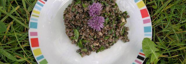 Salade de lentilles béluga et quinoa Markal bio. Indice glycémique bas