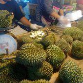 Vu au marché (17) - Pas cher le Durian ! - Noy et Gilbert en Thaïlande
