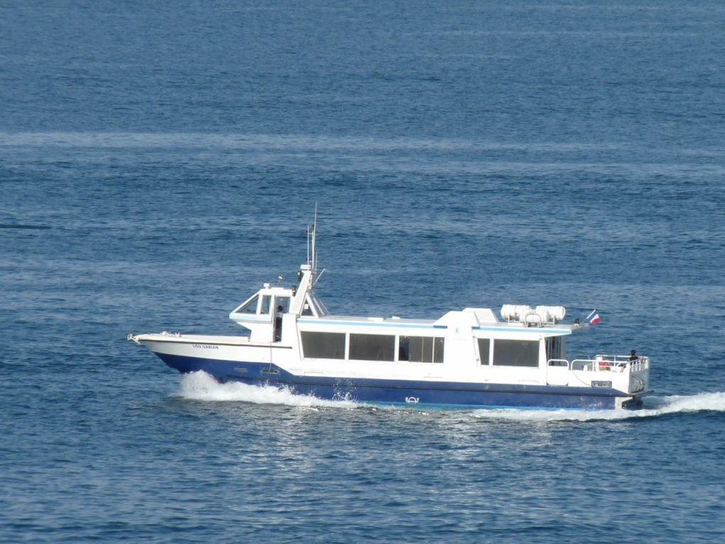 LOU  GABIAN , Vedette de la RMTT ,pour la traversée de la rade (vers la Seyne, St Mandrier ou les Sablettes