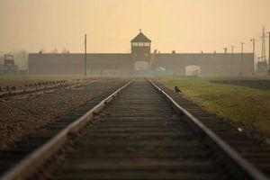 VIDEO. Allemagne : La mémoire des crimes nazis « inséparable » de l'identité du pays, selon Angela Merkel
