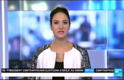 2014 01 11 - MARION GAUDIN - FRANCE 24 - LE JOURNAL