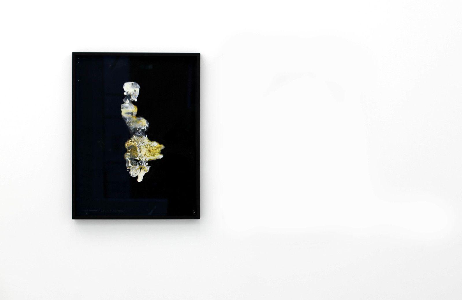 """""""Éclosion du 20/10/2020"""" de Lionel SABATTÉ - Courtesy de l'artiste et de la galerie C © Photo Éric Simon"""