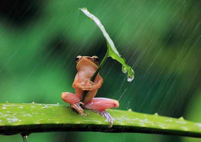 ITF MALTE...Toute la pluie tombe sur moi !!!