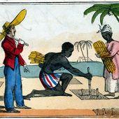 Histoire de l'esclavage : 4 périodes en 10 émissions