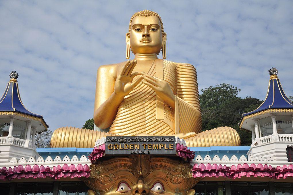 Album - Sri lanka 2011