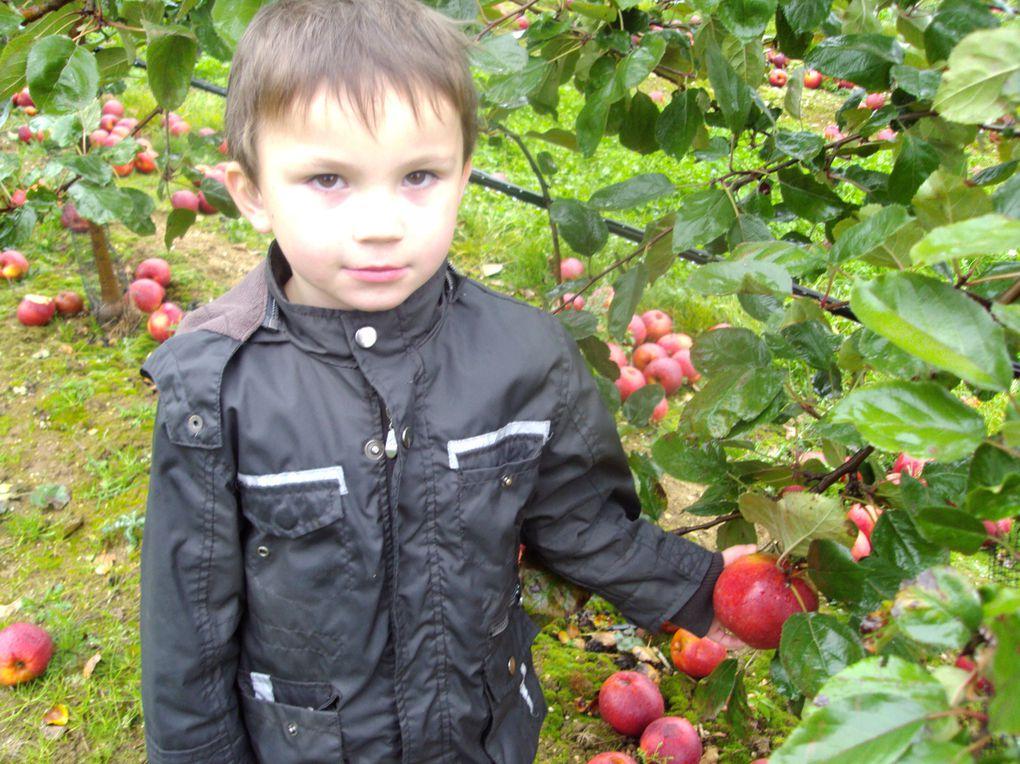 """Les élèves de Mmes CHEVALLIER et PLANCHE sont allés récolter des fruits et des légumes à """"la cueillette"""" à Beaurains."""
