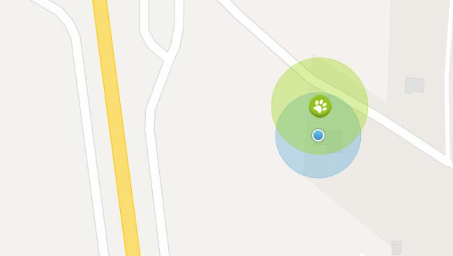Mon collier GPS pour chat - toujours sous surveillance et sous protection avec Weenect