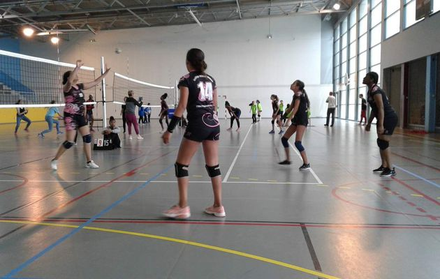 AS volley semaine du 27 au 29 mai
