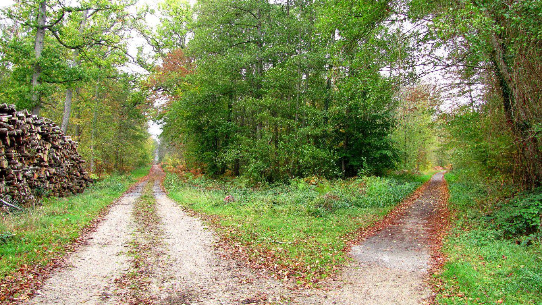 carrefour_Route de la Mariolle_Piste Cyclable