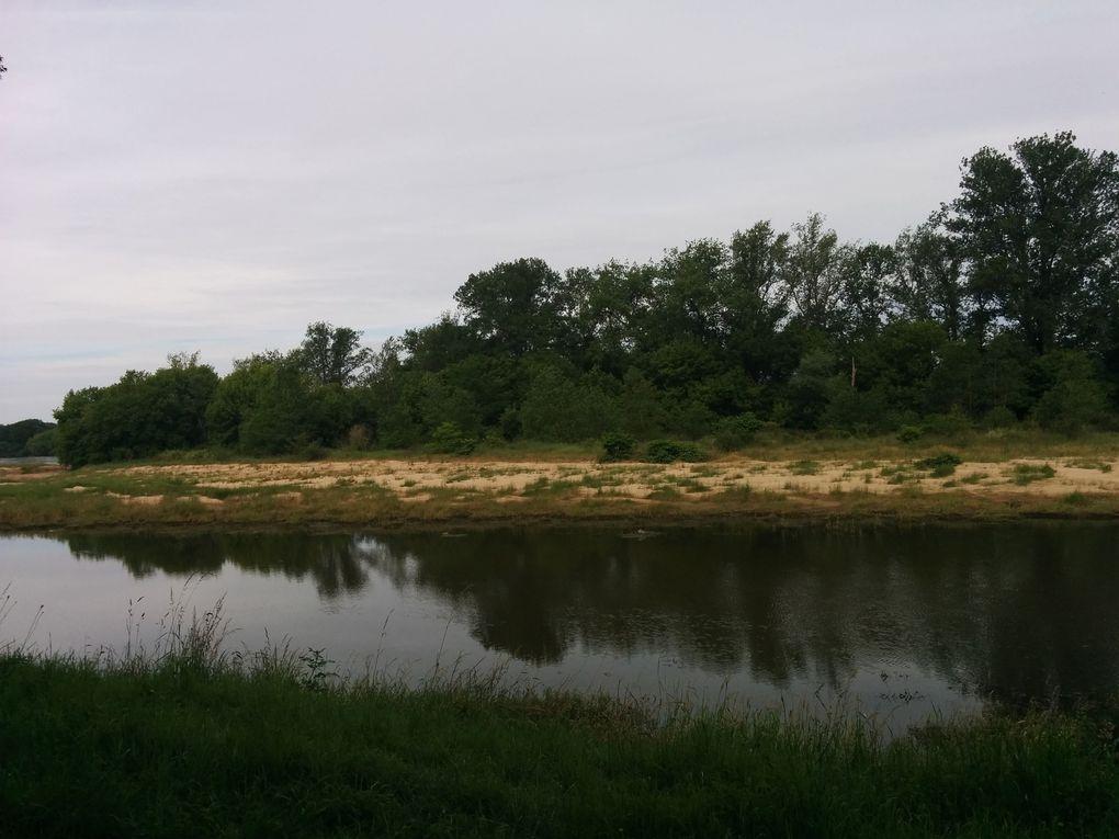 De Cosne à Pouilly, entre fleuve sauvage et vignes précieuses