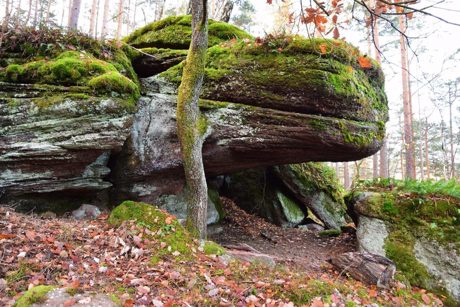 Un petit abri sous-roche