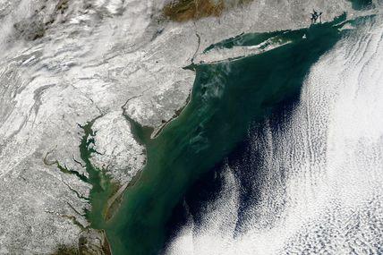 Snowzilla : la côte est des Etats-Unis paralysée par la neige