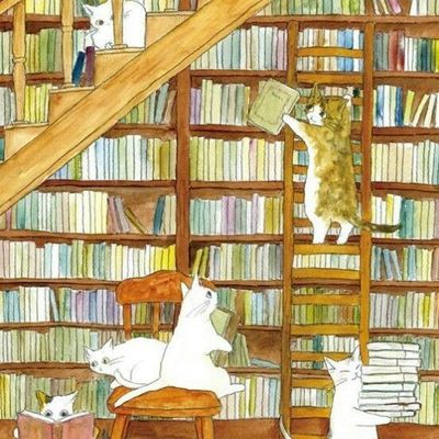 Chats livres...