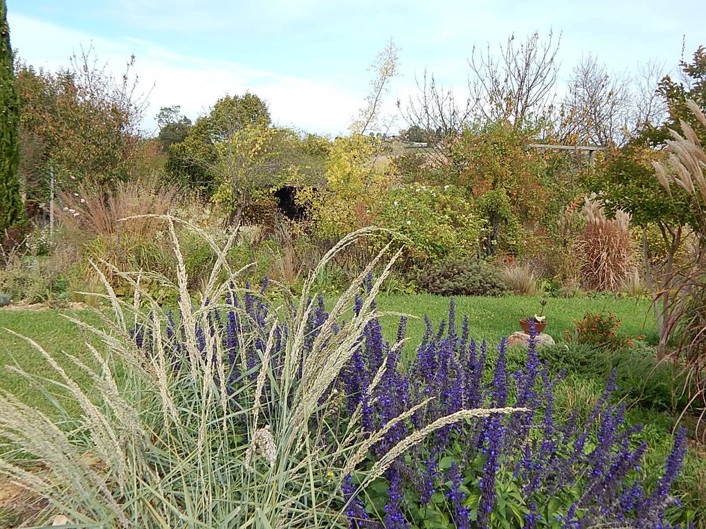 Jardin d'Enteoulet dans le Gers