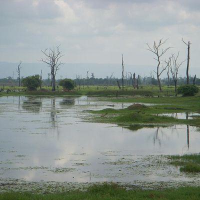 suite histoire du Cambodge 4